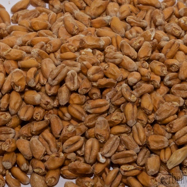 Weyermann® Pale Wheat Malt 4°EBC