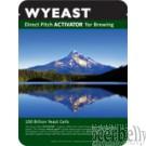 Wyeast 5151 PC Brettanomyces claussenii